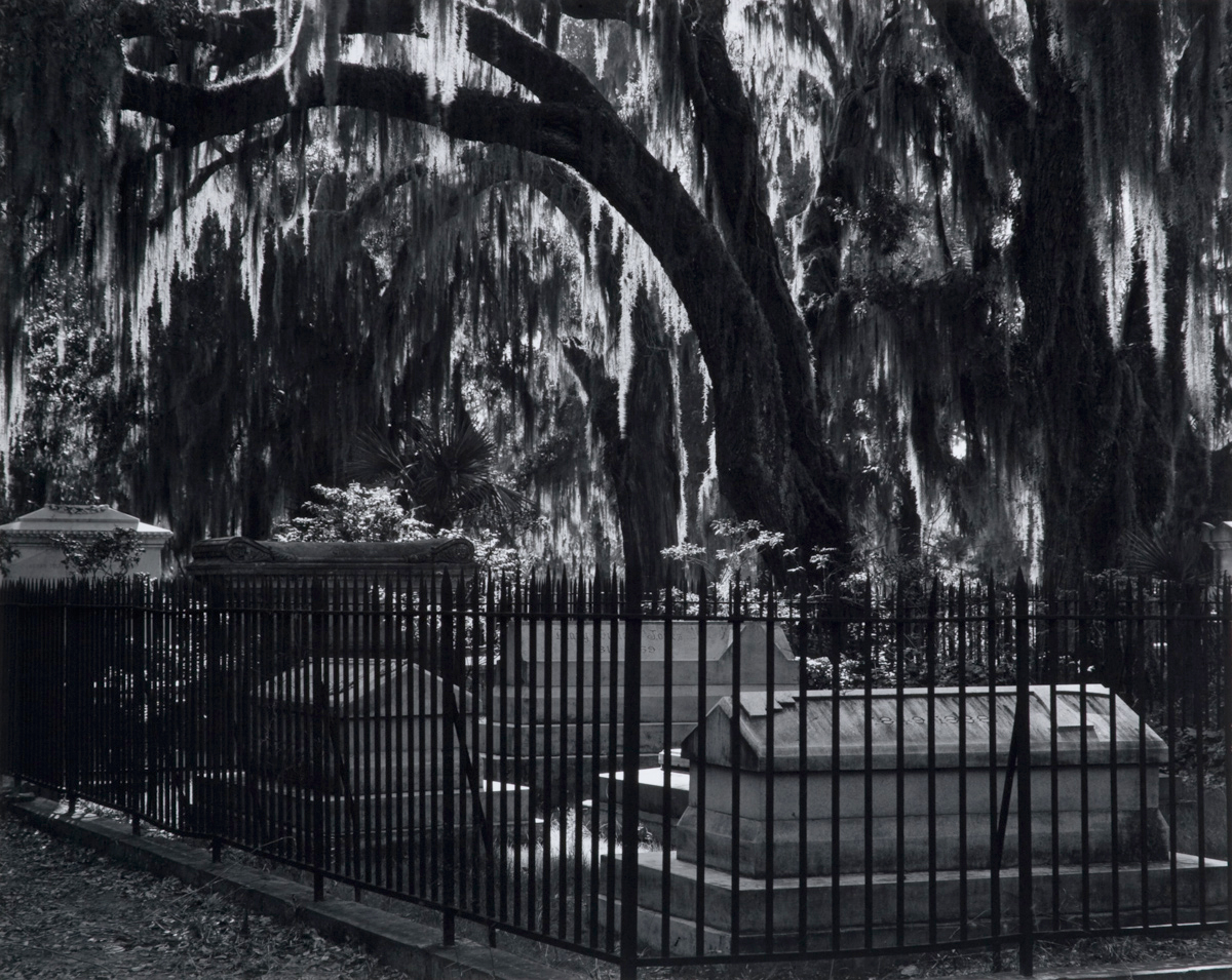 Bonaventure Cemetery, Savannah GA, 1941, Edward Weston